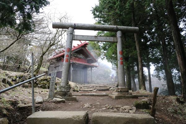 阿夫利神社(本社)