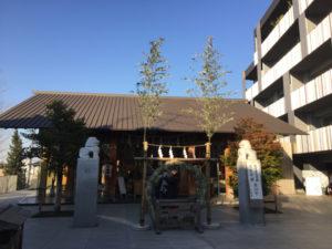 東京 赤城神社