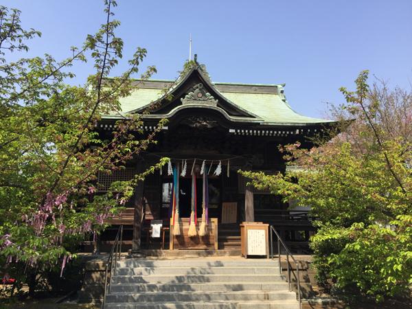 東京 桜神宮